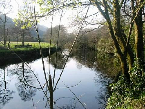 The Eachaig River of the Argyll Forest. Quiet? Peaceful? Alive...! Watch the Herons, glimpse a Kingfisher, join the fisherman... just a short walk from our holiday cottages